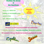 AtelierAdultes 29 11 2014